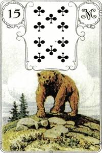 15медведь