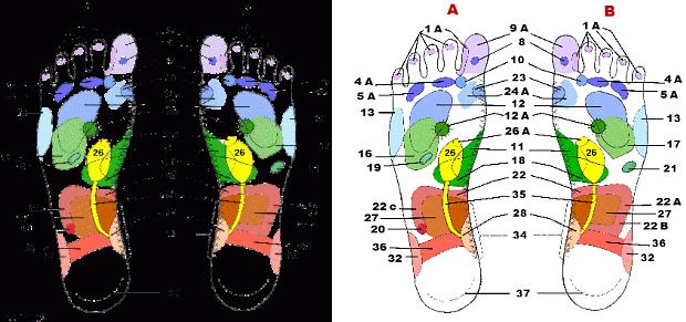Проекция на стопах